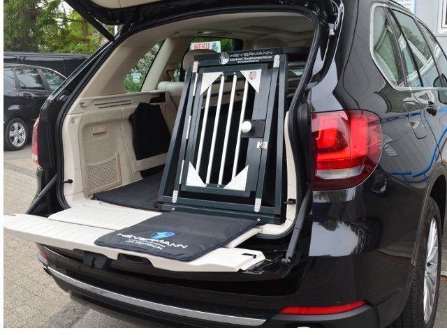 hundebox einzelbox f r bmw x5 f15 sonderbau 342 anthrazitgrau. Black Bedroom Furniture Sets. Home Design Ideas
