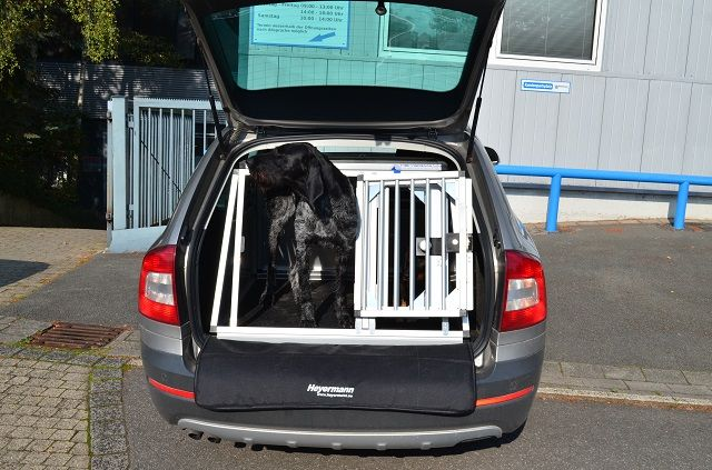 individuelle hundetransportbox doppelbox f r skoda. Black Bedroom Furniture Sets. Home Design Ideas