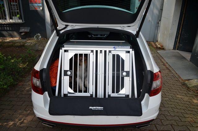 individuelle hundetransportbox doppelbox f r skoda. Black Bedroom Furniture Sets. Home Design Ideas