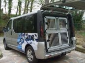 Individuelle Hundetransportbox/...