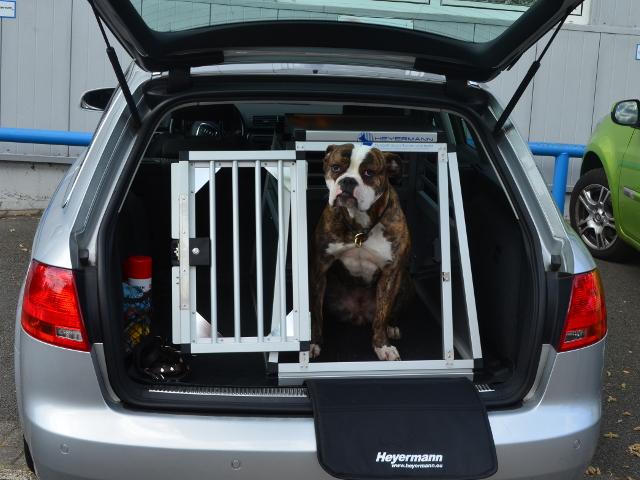 Hundetransportbox für Audi A4 Avant B7