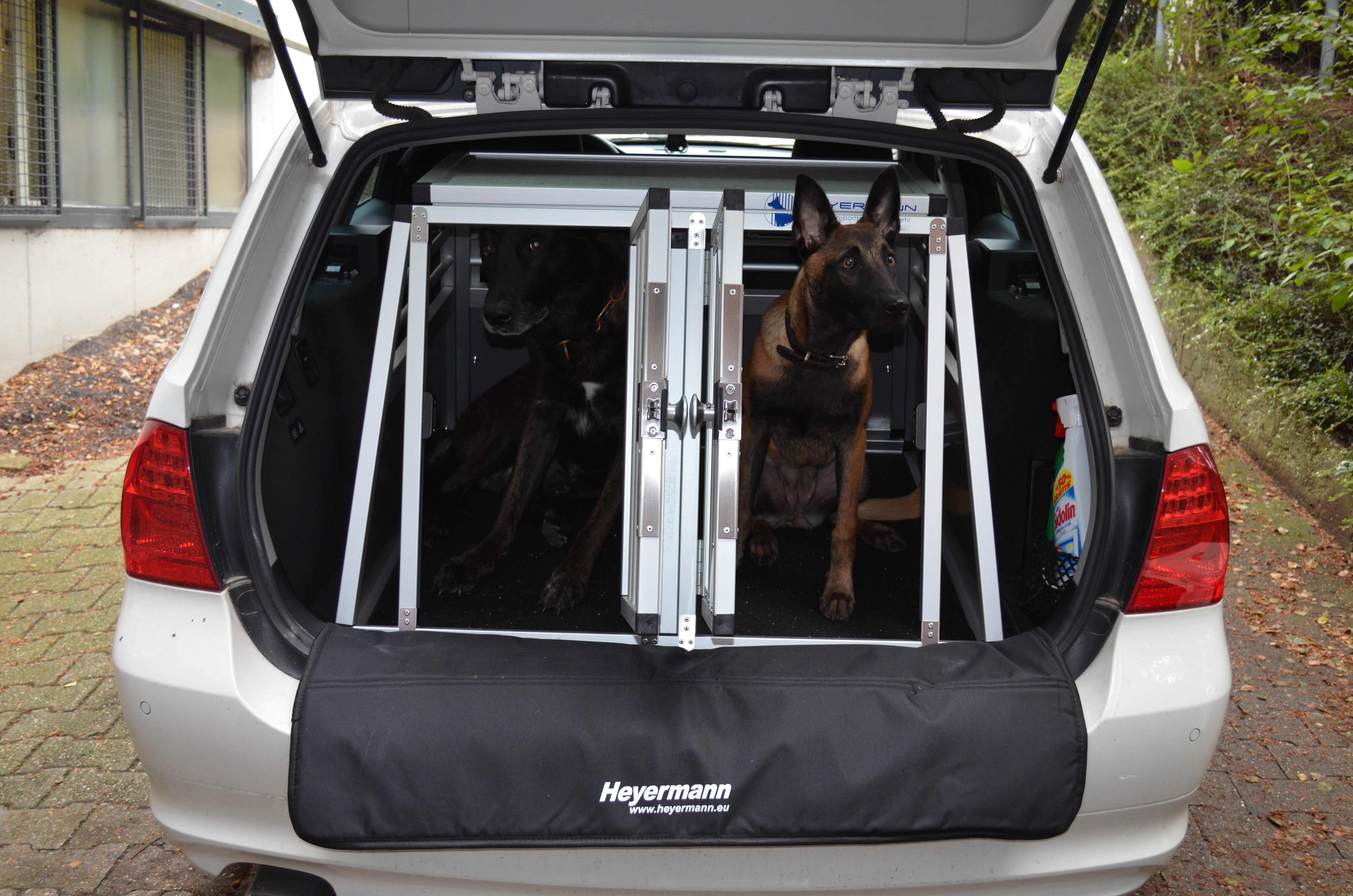 hunde sicherheits gurt h chste sicherheit f r hund und. Black Bedroom Furniture Sets. Home Design Ideas