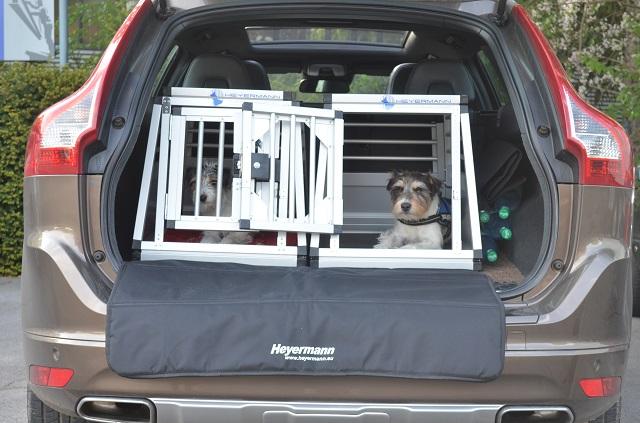 Hundetransportboxf für Terrier im Volvo XC-60